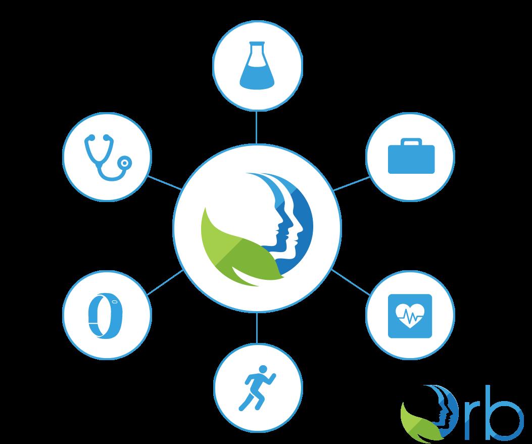 orb-health-data-web
